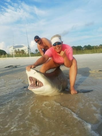Lemon Shark From The Beach
