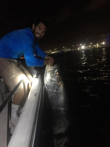 Miami Tarpon Fishing