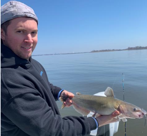 Delaware River Catfish